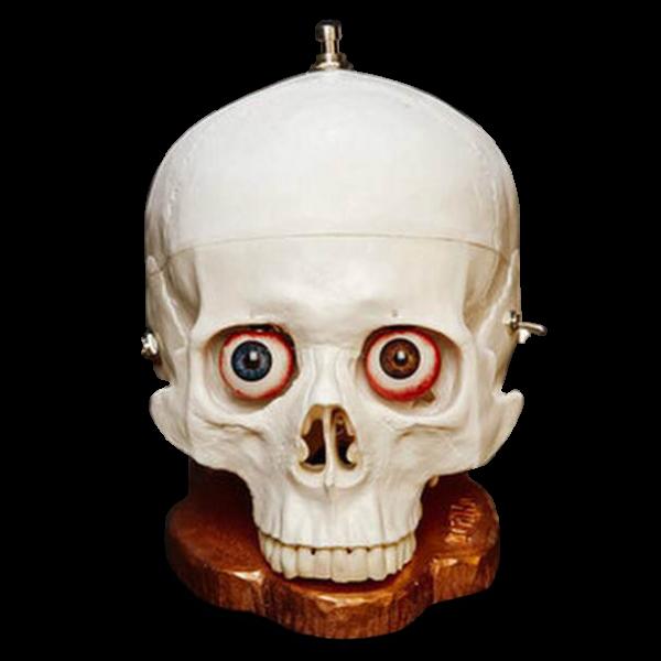 SkullFuzz-01